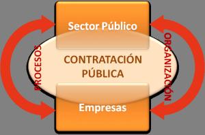 Organizacion y procesos contratacion publica